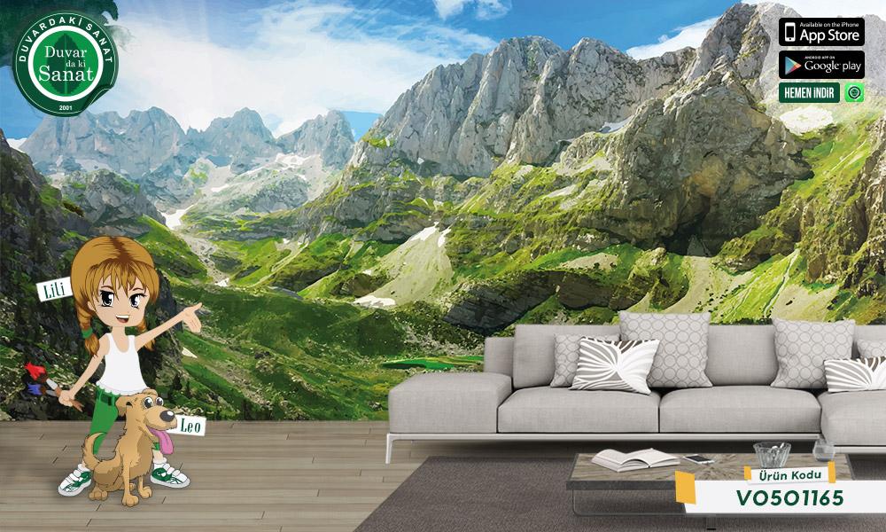 Duvardaki Sanat Arnavutluk Alpleri Duvar Kağıdı