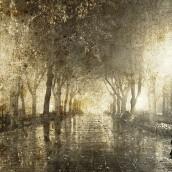 Yağmurlu Park