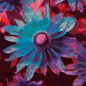 Çiçek Partisi
