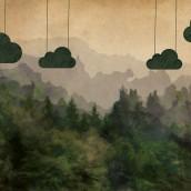 Askıda Bulut