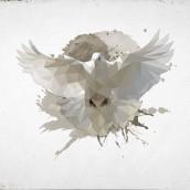 Özgür Kuş