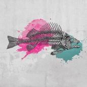 Tarihsel Balık